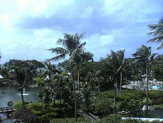 2005111301.jpg